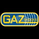 Gaz Shocks Logo